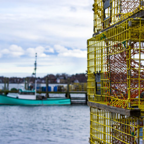 Yellow cages on the water.